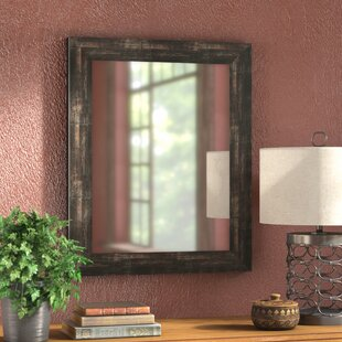 Read Reviews Brushed Classic Wall Mirror By Loon Peak