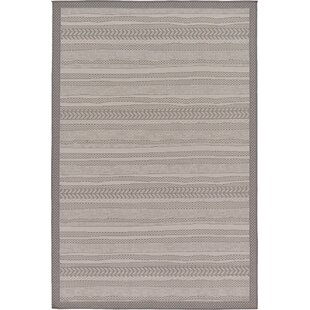 Cyrus Gray Indoor/Outdoor Area Rug