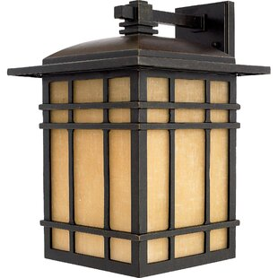 Read Reviews Woodard 1-Light Outdoor Wall Lantern in Imperial Bronze By Three Posts