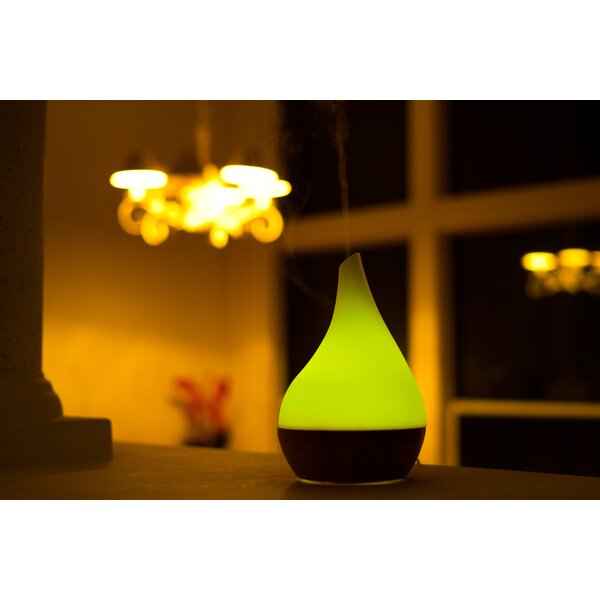 Glass and Bamboo Aroma Diffuser by Canary Products