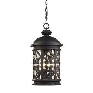 Affordable Price Robyn 3-Light Outdoor Hanging Lantern By Darby Home Co