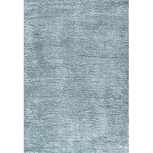 Teal Thick Pile Area Rugs You Ll Love In 2021 Wayfair