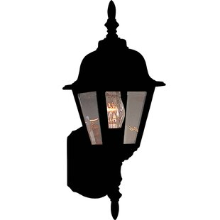 Shifflett 1-Light Outdoor Sconce