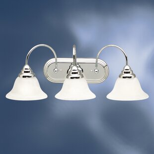 Ruhlman Traditional 3-Light Vanity Light by Red Barrel Studio