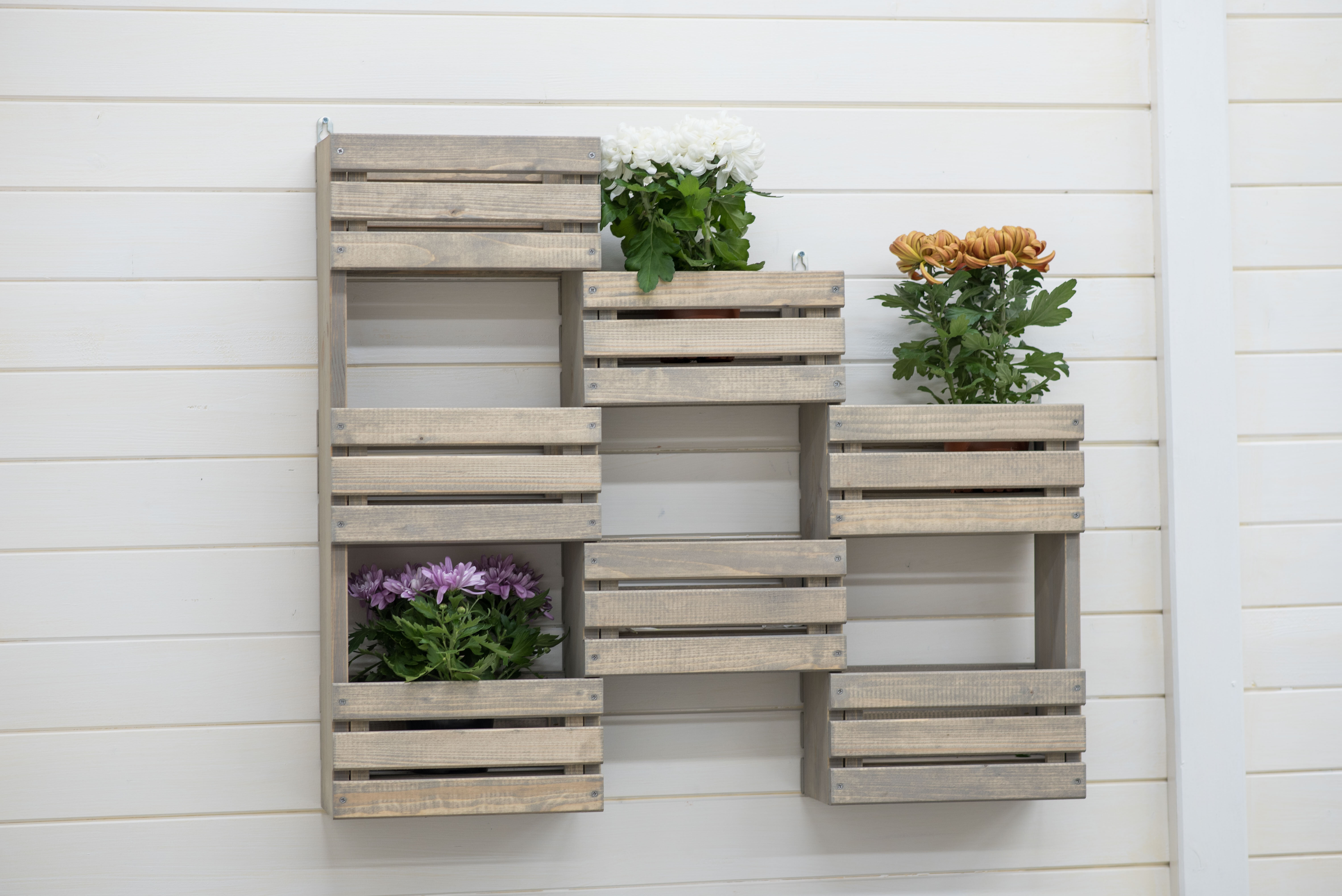 Zipcode Design Wood Wall Planter Reviews Wayfair Co Uk