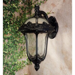 Compare prices Rose Garden 1-Light Outdoor Wall lantern By Special Lite Products
