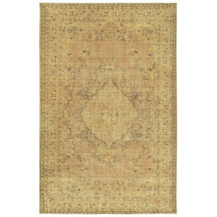 Olinger Gold Indoor/Outdoor Area Rug by Bungalow Rose