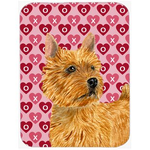 Valentine Hearts Norwich Terrier Hearts Love and Valentine's Day Glass Cutting Board By Caroline's Treasures