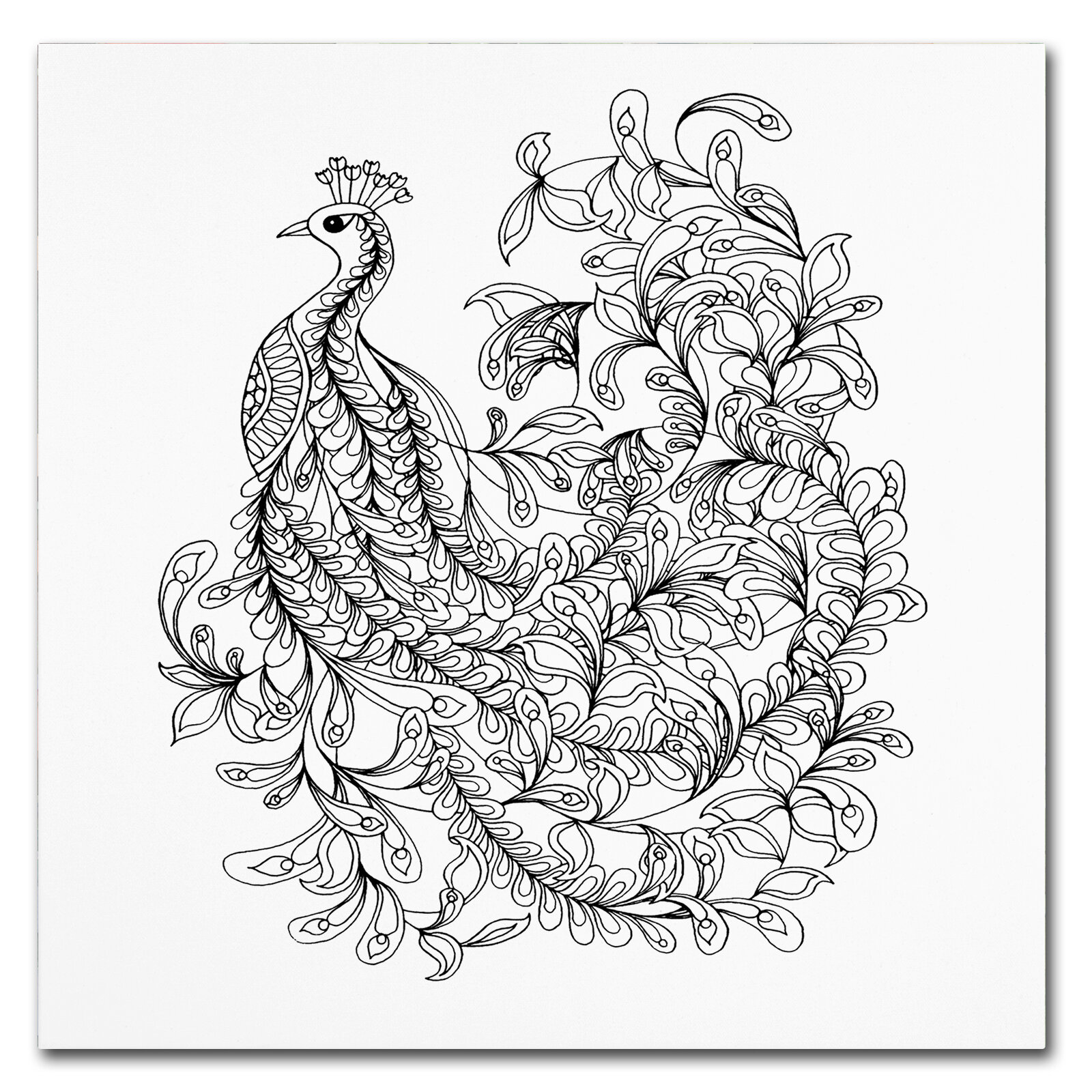 'Fancy Peacock' Drawing Print on Wrapped Canvas