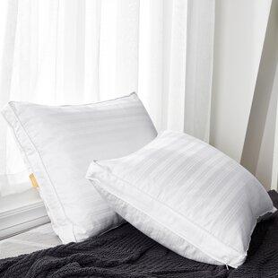 Bridgette Plush Down Bed Pillow (Set of 2)