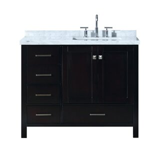 Erithon 43 inch  Rectangular Single Bathroom Vanity Set