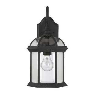 Hamil 1-Light Outdoor Wall lantern