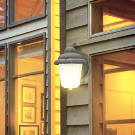Affordable Price 1-Light Outdoor Sconce By Westinghouse Lighting