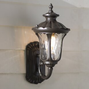 Weisberg Clear Water Glass Outdoor Sconce