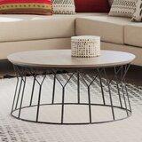 Deion Frame Coffee Table by Mistana™