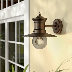 Grays 1-Light Outdoor Barn Light