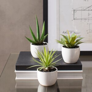 Aldorough 3 Piece Faux Southwest Succulent Set