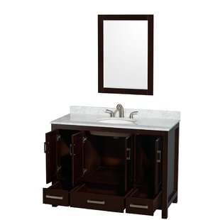 Sheffield 48 inch  Single Espresso Bathroom Vanity Set with Mirror