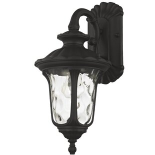 Best Reviews Gurnee 1-Light Outdoor Wall Lantern By Three Posts