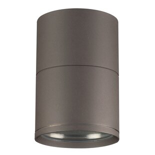 Read Reviews Lowestoft 1-Light Outdoor Flush Mount By Ebern Designs