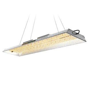2000W LED Full Spectrum Grow Light