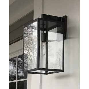 Escamilla 1-Light Outdoor Wall Lantern