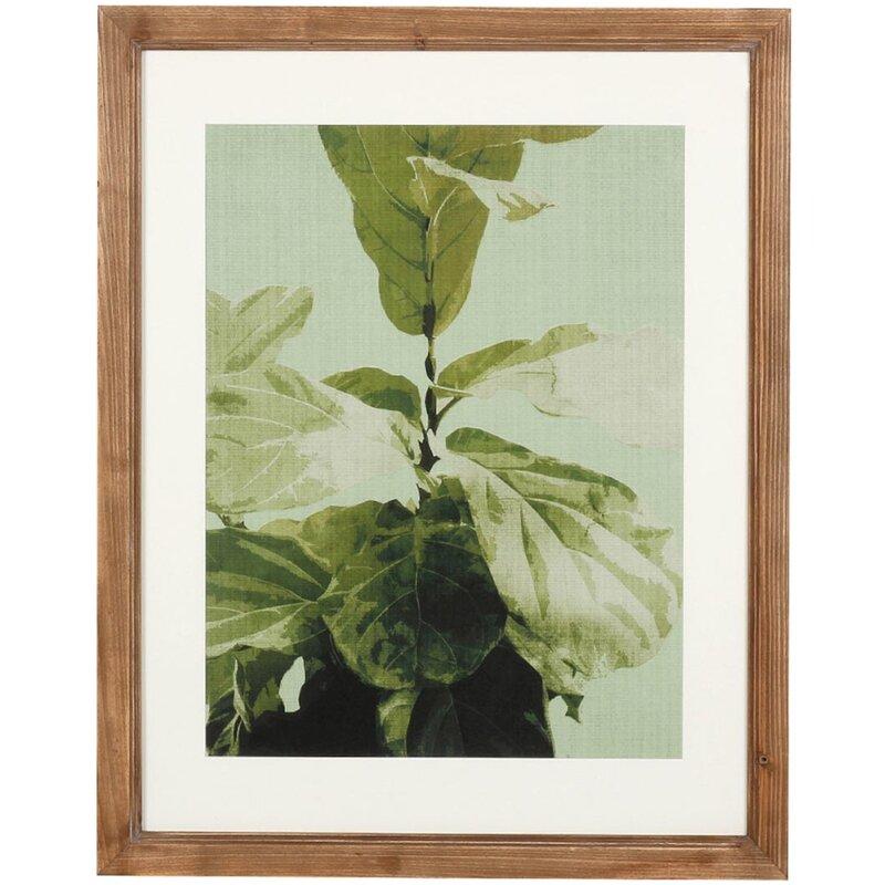 Foreside Home & Garden \'Fresh Botanical\' Framed Graphic Art Print ...