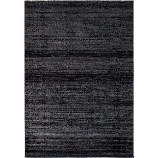 Best Price Grogg Black Area Rug ByWilliston Forge