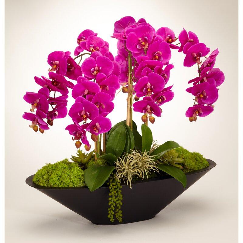 floral home decor orchid floral design wayfair.htm t c floral company orchid floral arrangement in metal pot  orchid floral arrangement in metal pot