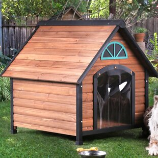 Oleary Contemporary Dog House
