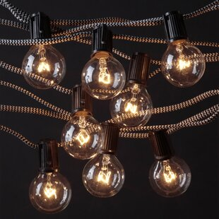 Pinney 10 ft. 10-Light Globe String Light