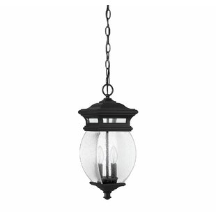 Hultgren 2-Light Outdoor Hanging Lantern By Alcott Hill Outdoor Lighting