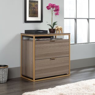 Haight 2-Drawer Lateral Filing Cabinet by Wrought Studio