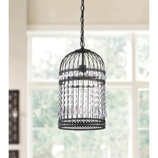 Bird cage pendant light wayfair annemarie bird cage 1 light foyer pendant aloadofball Gallery