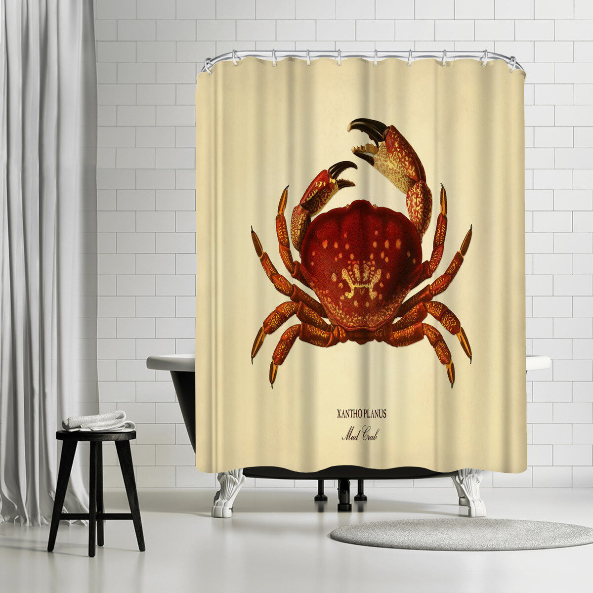 East Urban Home Adams Ale Mud Crab Shower Curtain