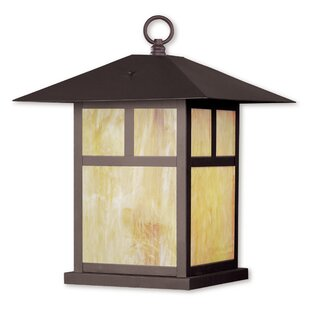 Giles 1-Light Outdoor Hanging Lantern by Alcott Hill Modern