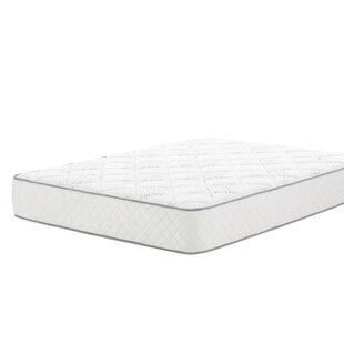 Wayfair Sleep 10 Plush Innerspring Mattress