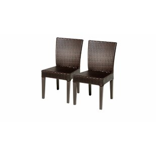 Meier Patio Dining Chair (Set of 2)