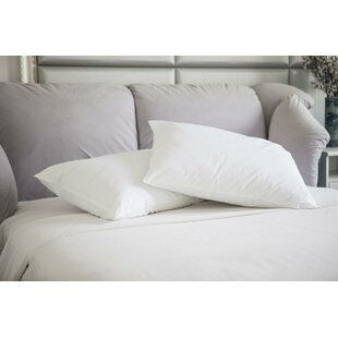 Natural Duck Feather Memory Foam Jumbo Pillow (Set of 2)