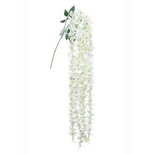Dancing Hanging Orchid Floral Arrangement (Set of 6)