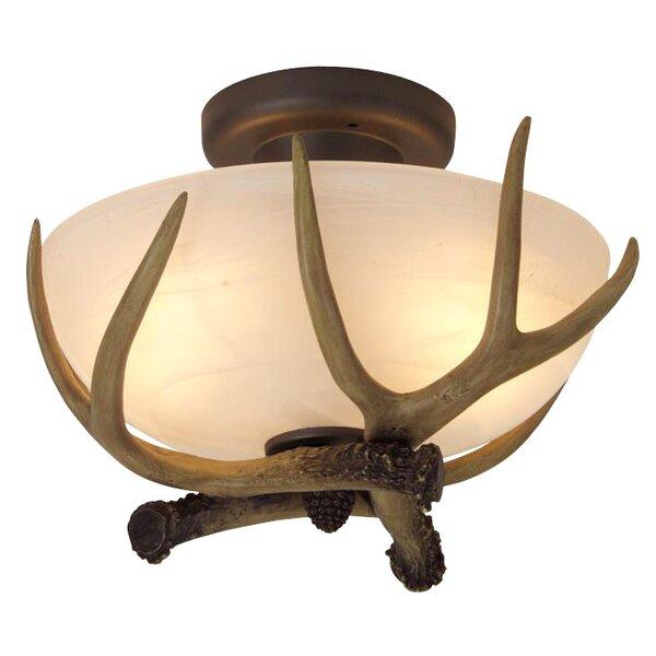Deer Antler Ceiling Lights Wayfair