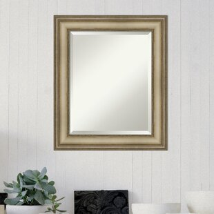 https://secure.img1-fg.wfcdn.com/im/00690804/resize-h310-w310%5Ecompr-r85/6763/67631424/Westmoreland+Traditional+Wall+Mirror.jpg