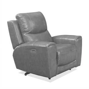 Palmateer Leather Power Recliner