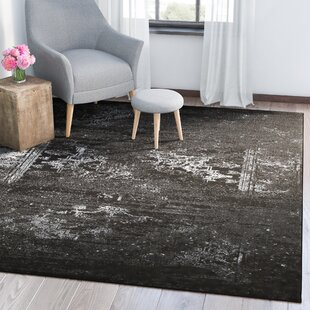 Review Rockford Black Area Rug by Trent Austin Design