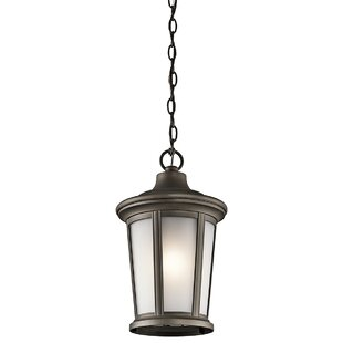 Review Clarington 1-Light Mini Pendant by Darby Home Co