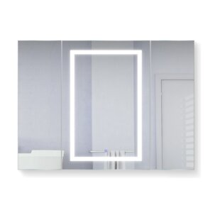 Budget Vanegas 48 x 36 Recessed or Surface Mount Medicine Cabinet with 3 Adjustable Shelves and LED Lighting By Orren Ellis