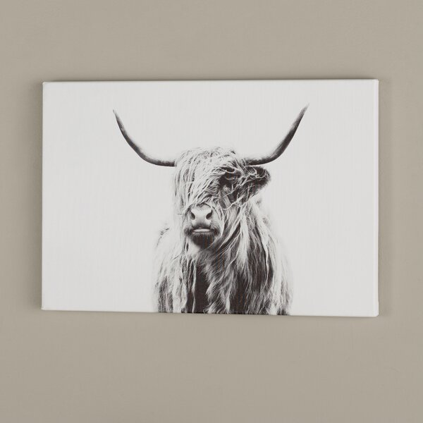 Cows-HIGHLAND CATTLE-PORTRAIT POSTER-size 61x91,5 cm