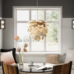 Westbury Park Plug In 1 Light LED Novelty Pendant