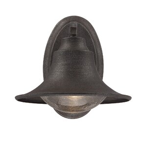 Teller 1-Light Outdoor Sconce