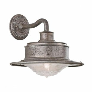 Low priced Theodore 1-Light Outdoor Barn Light By Darby Home Co